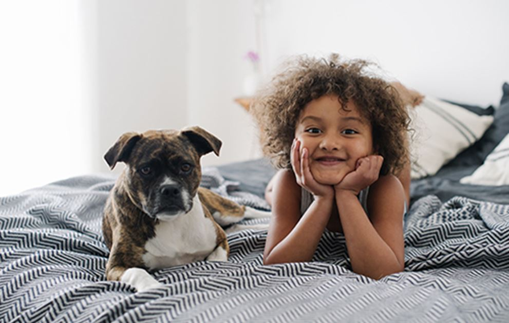 Young girl on bed with Boxer puppy